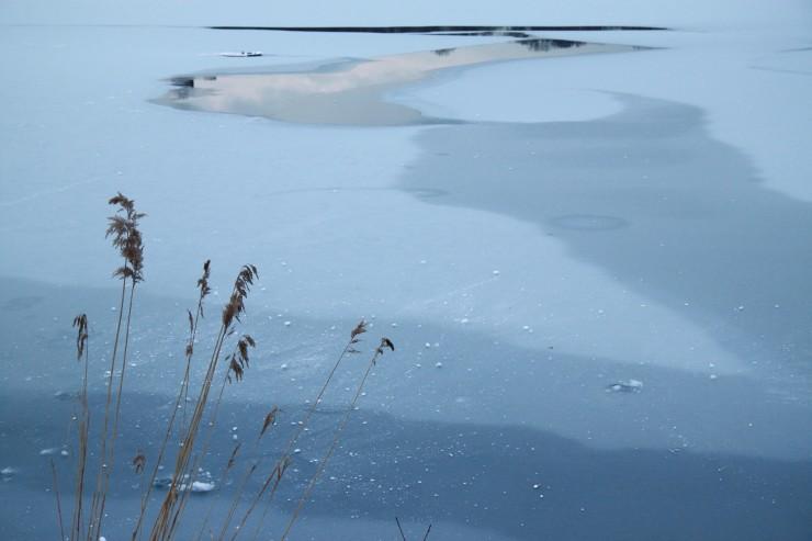 0013_NYC frozen reservoir centarl park NATURAL blue - IMG_7319
