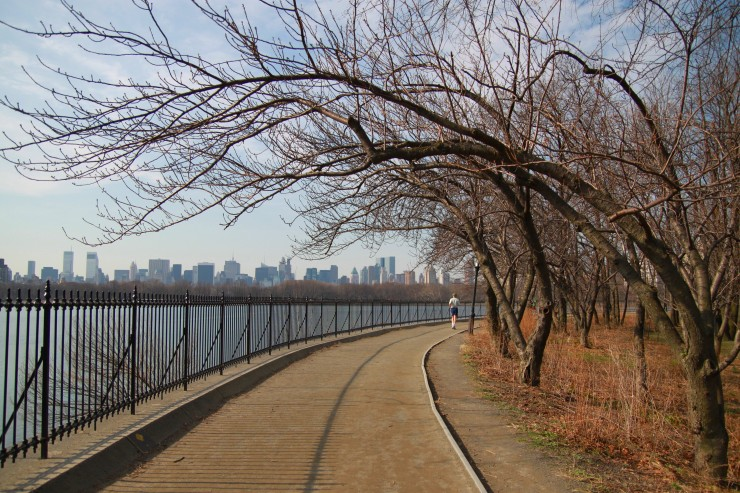 0014_nyc reservoir walk with arching trees - IMG_8881