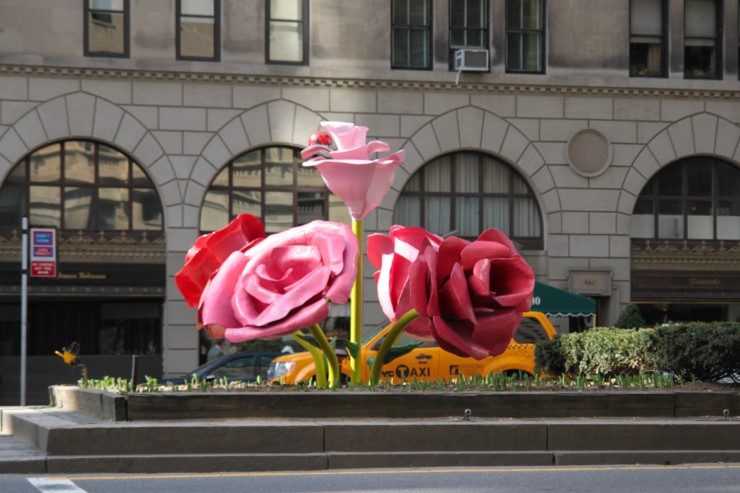 0016_NYC roses on 5th ave - IMG_5851